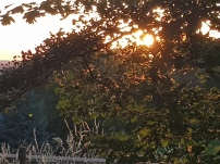 Paysage-SunSet-Chalet-Aywaille-FY-Jerome-Selosse-2018 (18)