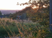 Paysage-SunSet-Chalet-Aywaille-FY-Jerome-Selosse-2018 (21)