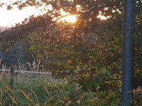 Paysage-SunSet-Chalet-Aywaille-FY-Jerome-Selosse-2018 (24)
