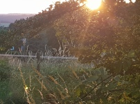 Paysage-SunSet-Chalet-Aywaille-FY-Jerome-Selosse-2018 (25)