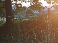 Paysage-SunSet-Chalet-Aywaille-FY-Jerome-Selosse-2018 (35)