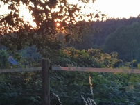 Paysage-SunSet-Chalet-Aywaille-FY-Jerome-Selosse-2018 (40)