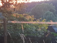 Paysage-SunSet-Chalet-Aywaille-FY-Jerome-Selosse-2018 (41)
