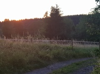 Paysage-SunSet-Chalet-Aywaille-FY-Jerome-Selosse-2018 (67)