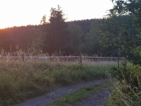 Paysage-SunSet-Chalet-Aywaille-FY-Jerome-Selosse-2018 (68)